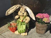 Paashaas in Slowakije Stock Fotografie