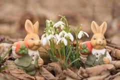 Paashazen in de lentebladeren naast sneeuwklokjes stock fotografie