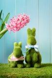 Paashazen met hyacint Stock Afbeeldingen
