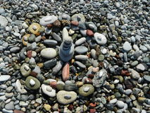 Pabbles auf dem Strand Lizenzfreie Stockfotos
