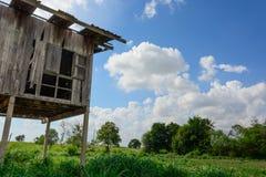 Pabellón de madera que rodea por el campo de arroz Imágenes de archivo libres de regalías