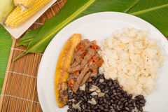 Pabellon criollo homemade Stock Images