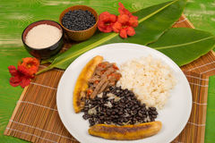 Pabellon criollo and ingredients Royalty Free Stock Image
