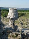 Pabiti Kamani (stenöknen) Arkivfoton