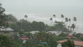 Pabuktyfoon, oceaan overzeese kust, Thailand Natuurramp, eyewall orkaan De sterke extreme cycloonwind slingert palm stock footage