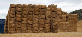 Pacas de la paja del cereal. Imagen de archivo