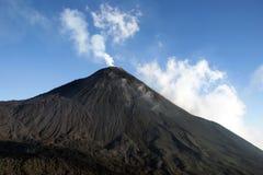 pacaya火山 库存图片