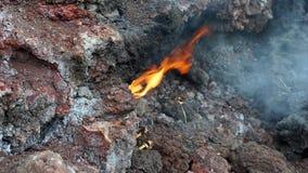 Pacaya vulkan/Guatemala Arkivbild