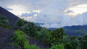 Pacaya vulkan/Guatemala Fotografering för Bildbyråer