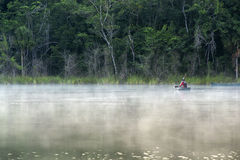 Peaceful lagoon in Pac chen, Quintana Roo. Early in the morning, the mist decorated the lagoon in Pacchen, a perfect time to take a kayak ride Royalty Free Stock Photo