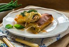 Pacchetti di filo del burro del basilico e del salmone Fotografia Stock