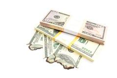 Pacchetto dei dollari e dei dollari bruciati su bianco Fotografie Stock