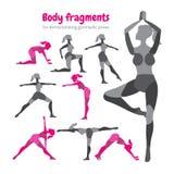Pacchetto delle parti del corpo Insieme di allenamento del corpo Donna che fa forma fisica Immagini Stock