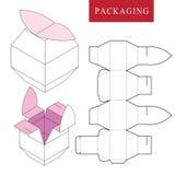 Pacchetto di concetto della frutta Illustrazione di vettore della scatola royalty illustrazione gratis