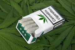 Pacchetto di sigarette Fotografie Stock Libere da Diritti