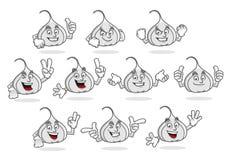 Pacchetto di vettore della mascotte dell'aglio, serie di caratteri dell'aglio, vettore Fotografia Stock Libera da Diritti