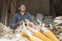 Pacchi dell'uomo del cereale Fotografia Stock