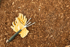 pacciame dei guanti del giardino Fotografia Stock Libera da Diritti