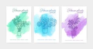 Pacco dei modelli verticali dell'aletta di filatoio o del manifesto con le piante d'appartamento che crescono in vasi estratti co royalty illustrazione gratis
