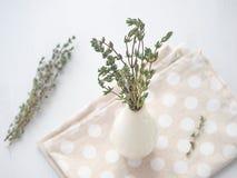 Pacco dei ramoscelli del timo in piccolo vaso bianco sopra fondo di legno bianco Fotografia Stock
