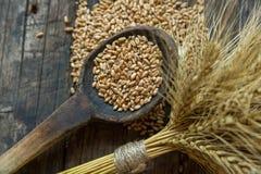 Pacco di grano e dei fagioli del grano Fotografia Stock