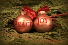 Pace e gioia Immagini Stock Libere da Diritti