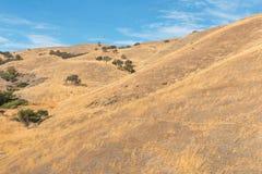 Pacheco Pass Stock Image