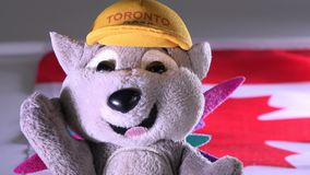Pachi the porcupine, mascot of the Panam Games in Toronto stock video footage