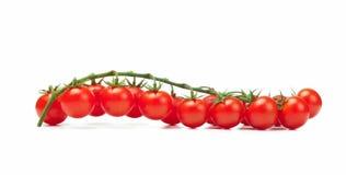 Pachino dos tomates fotos de stock royalty free