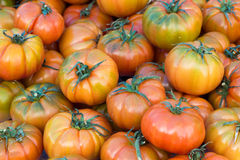 Pachino tomatoes. On a market Stock Image