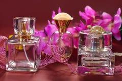 Pachnidła i menchii orchidee obrazy royalty free