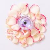 Pachnidło butelka z kwiatów płatkami na lekkim tle Mydlarnia, woni kolekcja Kobiet akcesoria Zdjęcia Royalty Free