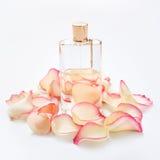 Pachnidło butelka z kwiatów płatkami na lekkim tle Mydlarnia, woni kolekcja Kobiet akcesoria Fotografia Stock