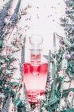 Pachnidło butelka z roślinami i kwiatami, odgórny widok Mydlarnia, kosmetyki, botaniczna woń Obraz Royalty Free