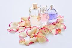 Pachnidło butelki z kwiatów płatkami na lekkim tle Mydlarnia, woni kolekcja Kobiet akcesoria Zdjęcia Stock