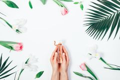 Pachnidło w kobiet rękach wśród kwiatów zdjęcia royalty free