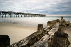 Pachwina na plaży w Południowa Karolina z molem w tle obraz stock