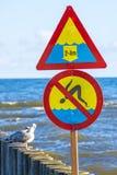 Pachwina w morzu bałtyckim zdjęcie royalty free
