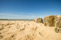Pachwina w morzu bałtyckim z żagiel łodzią obraz stock