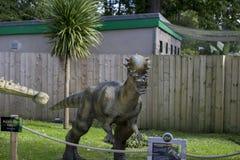 Pachycephalosaurus Royalty Free Stock Image