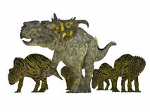 Pachyrhinosaurus Dinosaur with Young Stock Photo