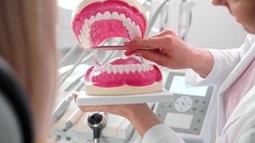 Paciente da exibição do dentista as dentaduras artificiais vídeos de arquivo