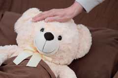 Paciente del enfermo del oso de la felpa Fotografía de archivo