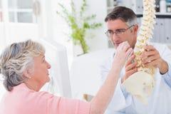 Paciente que mira la espina dorsal anatómica mientras que doctor explaing la Imagen de archivo libre de regalías