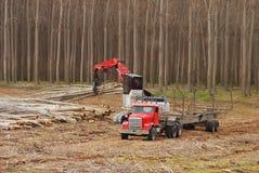 Free Pacific Albus Log Truck Stock Image - 23210871
