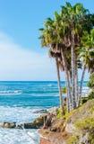 Pacific Coast νότιας Καλιφόρνιας Στοκ Εικόνα