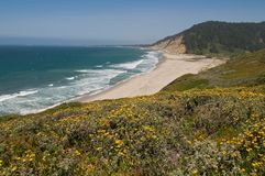 Pacific coast Stock Photography