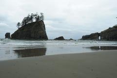 Pacific coast Royalty Free Stock Photos