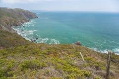 Pacific coast Royalty Free Stock Photo