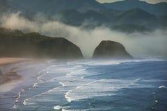 Pacific Coast Στοκ εικόνες με δικαίωμα ελεύθερης χρήσης